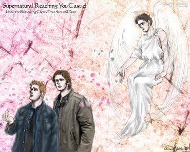 20110410_cas_reaching_you